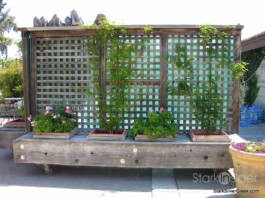 Wente Vineyards Planter Box