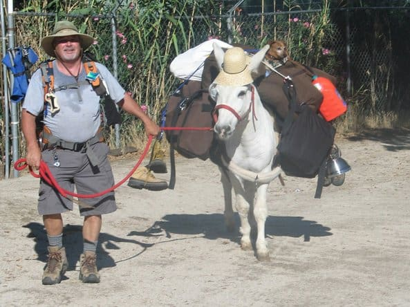 Starting in Tecate, Mike Younghusband and his burro Don-Kay walked 1,147 miles down the Baja Peninsula.