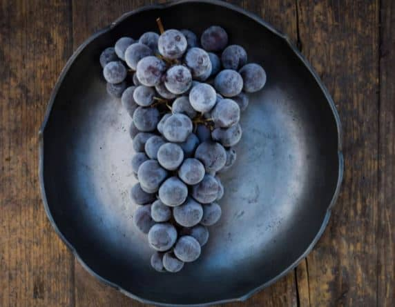 State of the Wine Industry Report 2016