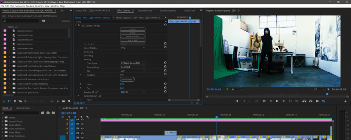 RED Redcode RAW r3d effect controls settings Premiere Pro