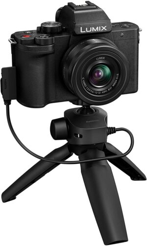 Panasonic G100 best corporate video mirrorless recommended 300x502 - Videography: Prime 5 suggestions for capturing company movies at residence