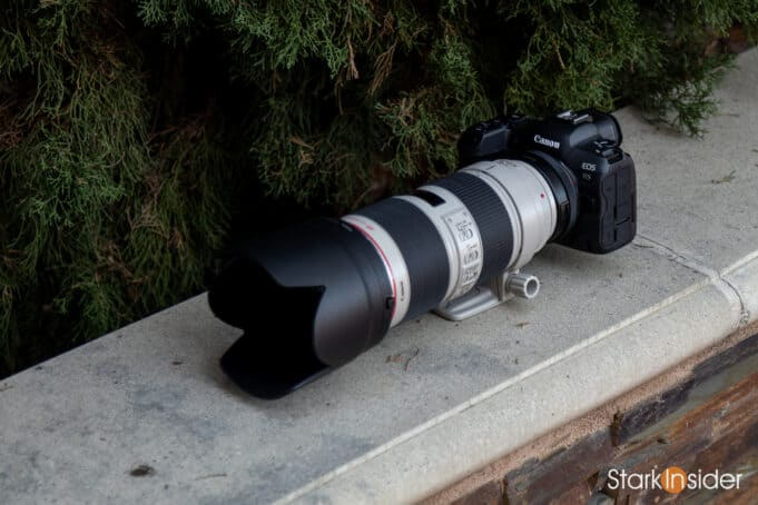 Canon EOS R5 with Canon 70-200mm telephoto lens and EF adapter